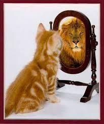 Razão Crítica: Muito além do espelho mágico
