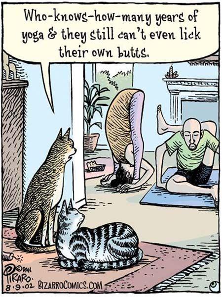 Yoga memes: