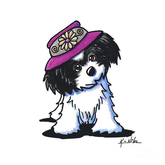 Havanese Drawing - Havanese Sunshine by Kim Niles