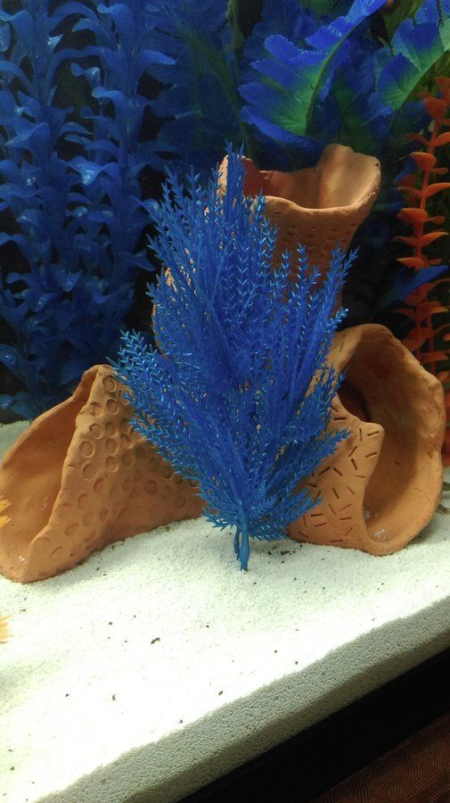 Diy and crafts decor and aquarium on pinterest for Aquarium decoration diy