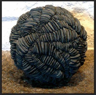 Nodule-corrasion   2009 - cement, pebbles - Ø30 cm: