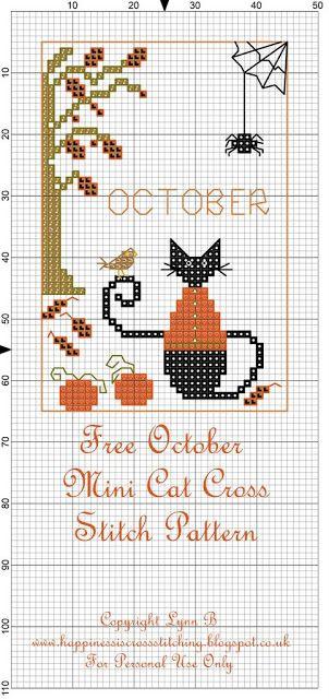 Mini Cat Cross ottobre