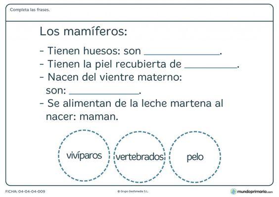 Fichas Para Imprimir Para Niños De Primaria Ciencias Naturales Fichas Texto De Ciencias Naturales