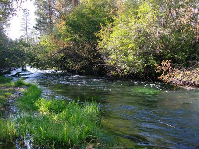 Hat creek ca most beautiful place to camp and fish for for Best places to fish in california