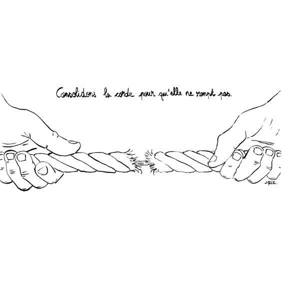 Consolider