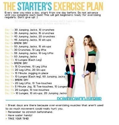 The Starter's Exercise Plan