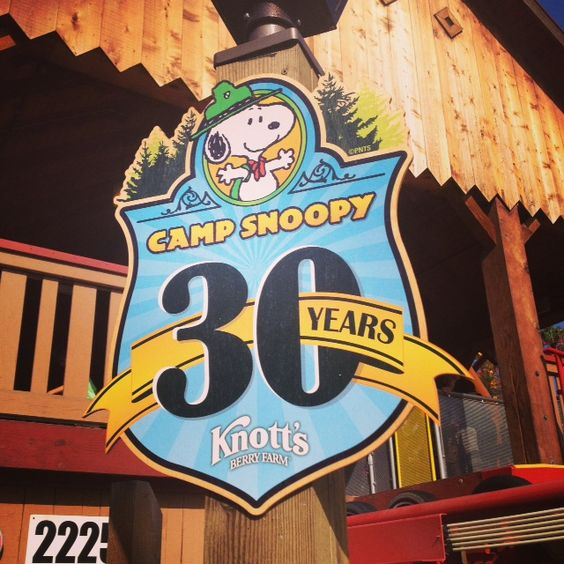 camp snoopy - Google Search
