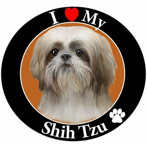 Black and White Shih Tzu Magnet