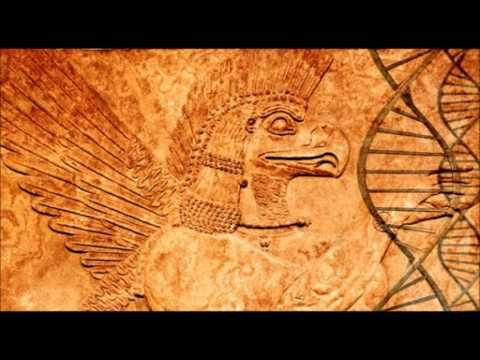 Do You Have Rh Negative Blood Your DNA Doesn't Come From Earth - YouTube