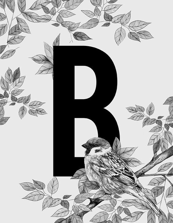 Resultado de imagen para alphabet series by thea bathan