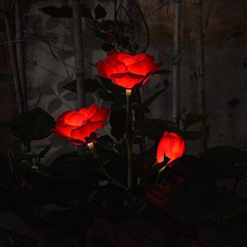 Chasgo Outdoor Solar Garden Light Decorative Led Solar Stake
