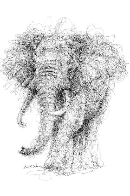 Art Images Of Elephants Sketches With Pencil Or Pens