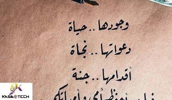 كلام جميل من القلب عن الحب Beautiful Words Words Places To Visit