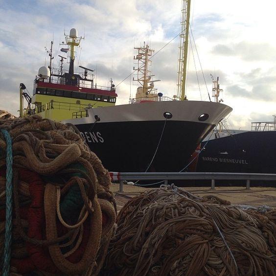 #haven#scheveningen#kerst#december#visnetten#vissersboot   Use Instagram online! Websta is the Best Instagram Web Viewer!