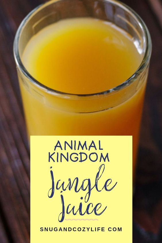 Disney Jungle Juice ('OHana Pog/Stitch Juice)