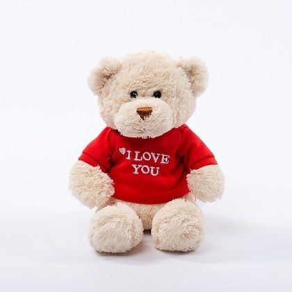 I Love You Bear Gift Plush...Share with your child how loved they