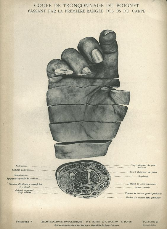 from the National Library of Medicine.