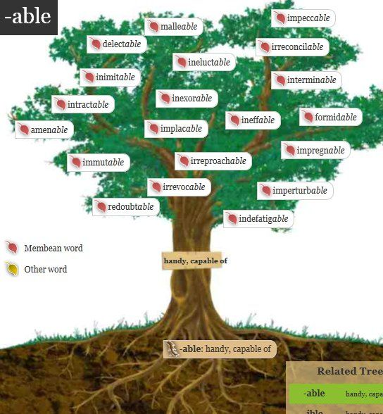 Finding roots root words and word families on pinterest - Tell tree dying order save ...