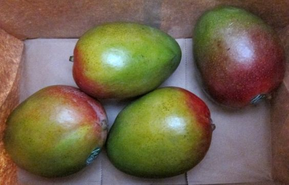 how to make mango ripe