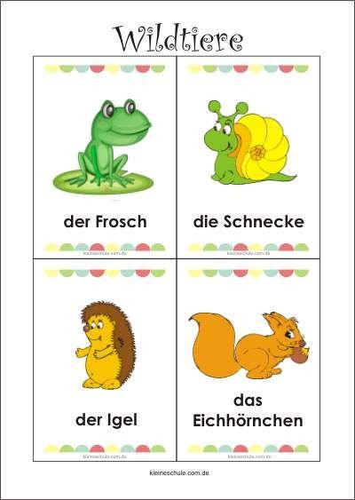 Wildtiere Lernkarten Lernkarten Fur Kinder Wilde Tiere