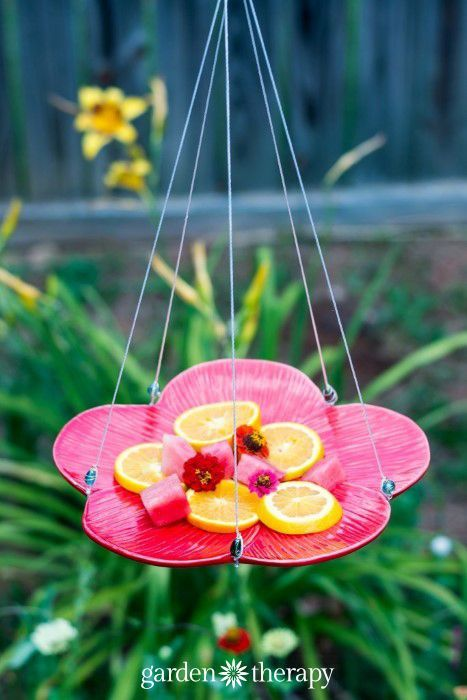 Attract beneficial pollinators to your garden with a butterfly feeder. This simple butterfly feeder is easy to make & will bring you lovely winged visitors.