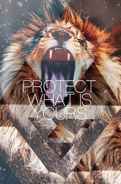 lion iphone wallpaper - photo #28