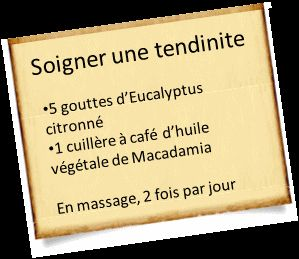 soigner tendinite eucalyptus citronne Huile essentielle et tendinite : Nos recettes