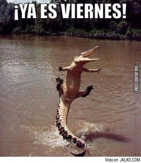 Ya es viernes!!!