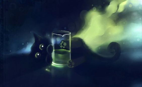 this little black cat adorable