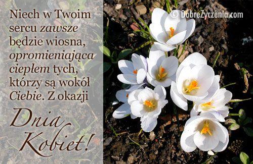Na Dzien Kobiet Zyczenia Wiosny W Sercu Good Sentences Humor Inspiration