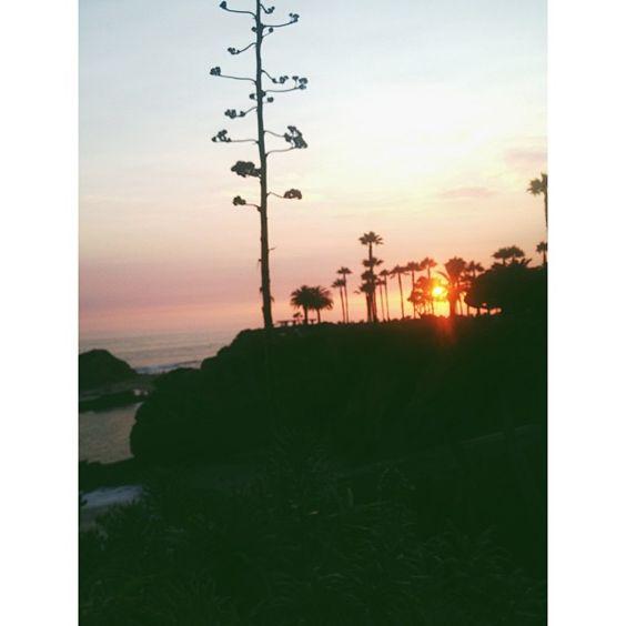 You make beautiful things. #treasureisland #themontage #lagunabeach #california #sunset #cliff #ocean