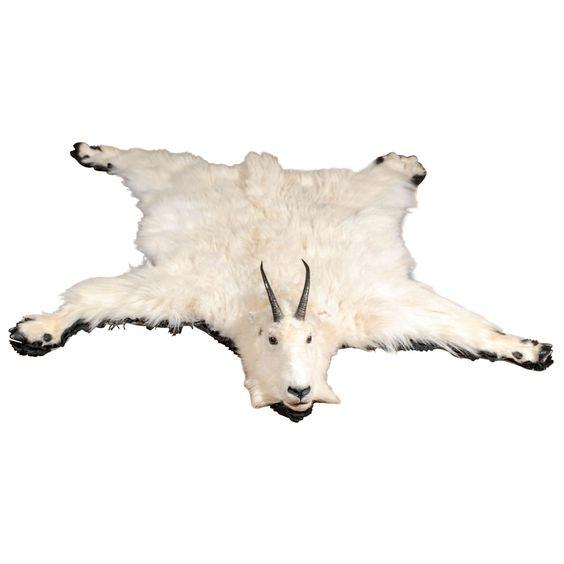 White Mountain Goat Taxidermy Rug