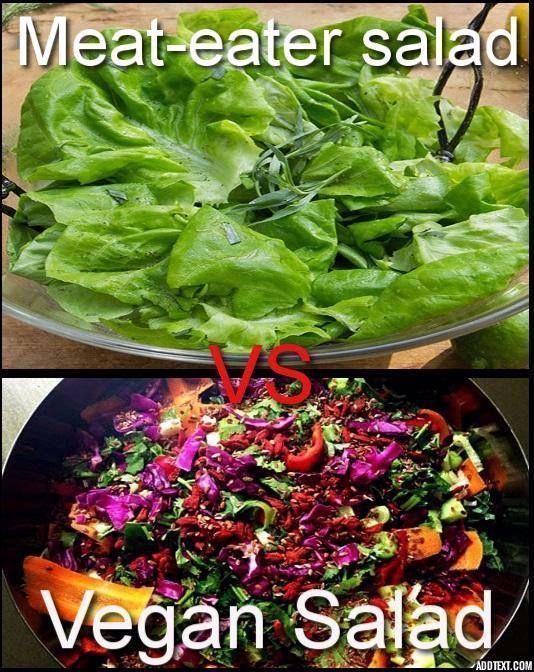 Meat Eaters Salad Vs Vegan Salad Vegan Meme Vegan Humor Vegan Lifestyle Veganism Veganhumor Meat Eaters Salad V In 2020 Vegan Jokes Vegan Facts Vegan Humor
