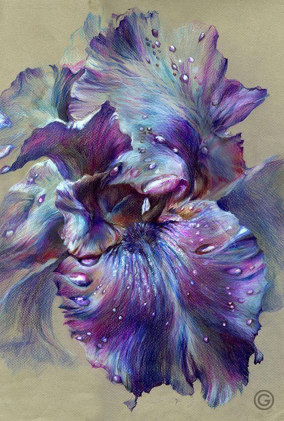 """ Iris "" (color pencil, 32Х48, 2014) ✏✏✏✏✏✏✏✏✏✏✏✏✏✏✏✏ IDEE CADEAU ☞ http://gabyfeeriefr.tumblr.com/archive ..................................................... CUTE GIFT IDEA ☞ http://frenchvintagejewelryen.tumblr.com/archive ✏✏✏✏✏✏✏✏✏✏✏✏✏✏✏✏"