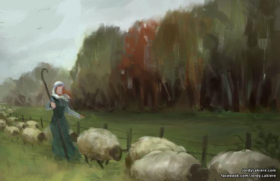 field sheep