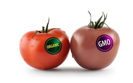 GMO s Non- GMO