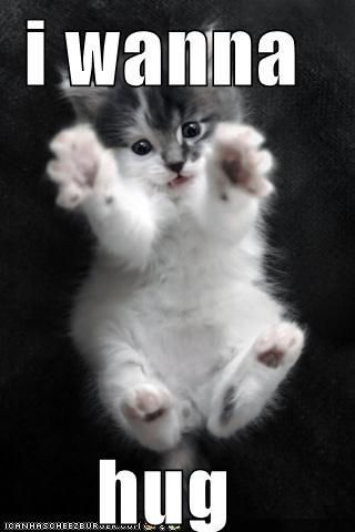 Bet you would hug this little one