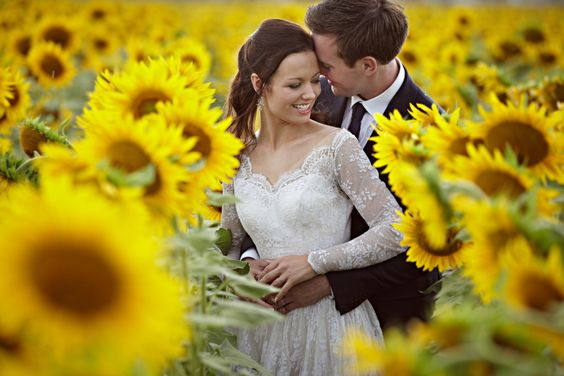 Villa Baroncino near Cortona wedding... stunning photos in sunflower fields