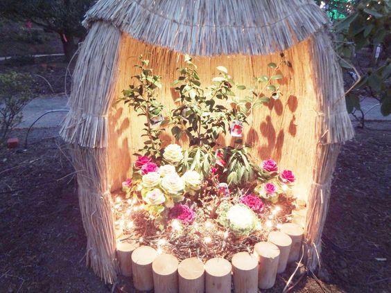 at the Ashikaga Flower Park in Ashikaga-Tochigi