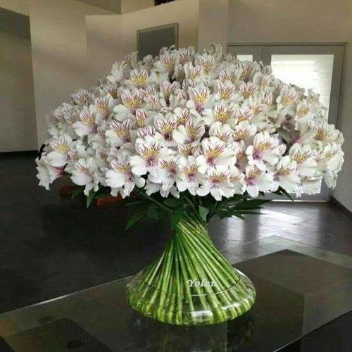 Pin By Nano Nimri On Beautiful Large Flower Arrangements Fresh Flowers Arrangements Modern Flower Arrangements
