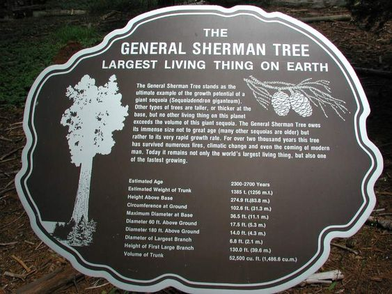 General Sherman's Tree Facts.