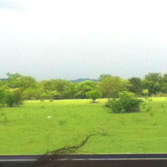 Highway that looks like a Safari. Managua, Nicaragua