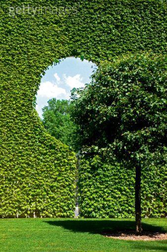 Fun hedge idea: