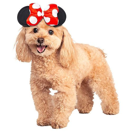 Minnie Mouse Dog Headpiece Party City Pet Halloween Costumes