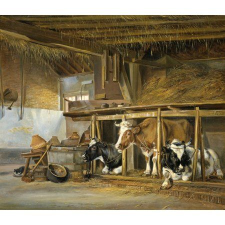 Cows In A Stable Canvas Art - (24 x 18)