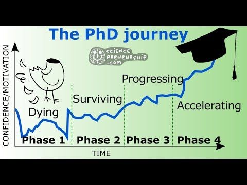 Doctoral Journey Week 1 Youtube Phd Humor Student Dissertation Motivation