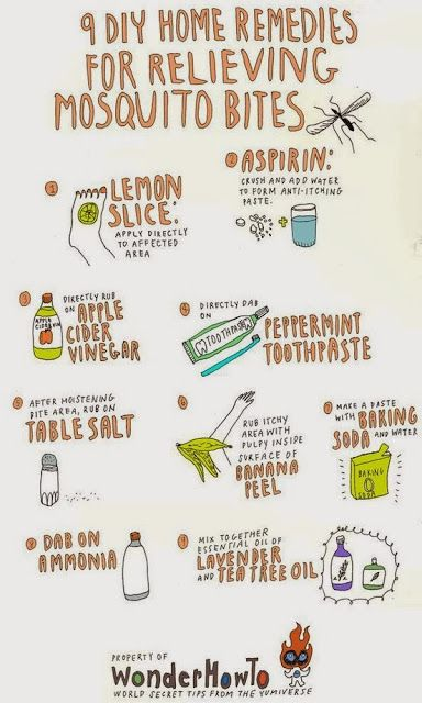DIY Home Remedies for relieving Mosquito Bites