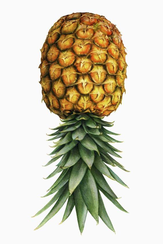 Waarom je een ananas ondersteboven moet bewaren