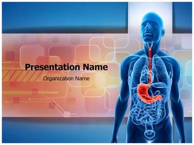 Human stomach powerpoint template this stunning template human stomach powerpoint template this stunning template showing internal organs will fit presentations on internal organs stomach diseases toneelgroepblik Images