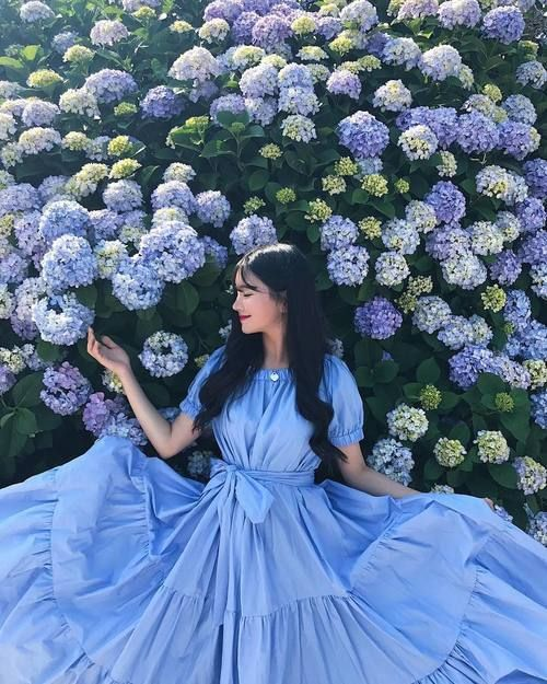 Картинка с тегом «blue, flowers, and ulzzang»